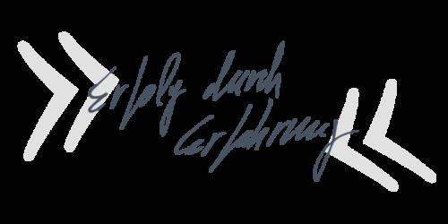 Handschriftzug_Erfolg durch_web